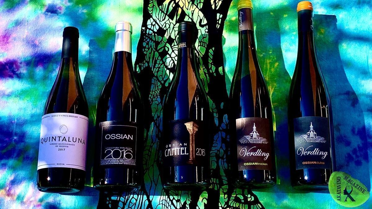 Ossian Vides y Vinos. Impone el nuevo rumbo de los mejores verdejos del mundo | Bodega estelar en AkataVino