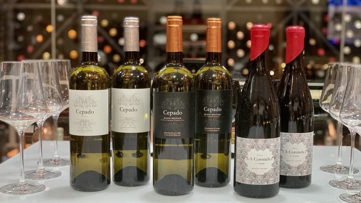 Adega O Cepado, expresión familiar de los vinos de Valdeorras | Bodega Destacada | AkataVino Magazine