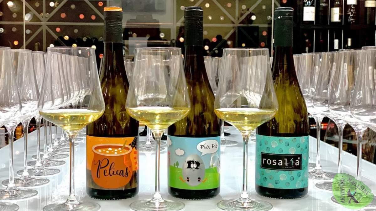 Constantina Sotelo Viticultora. No inventamos el vino, pero lo elaboramos a nuestra manera | AkataVino Magazine