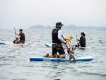 ワンちゃんと一緒に海に漕ぎ出せ!ドッグSUP体験会に参加!