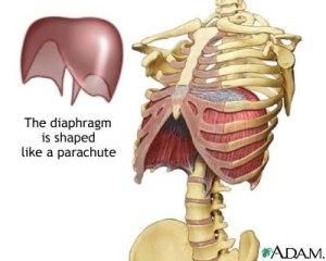 diyafram ameliyatı yöntemleri nelerdir?
