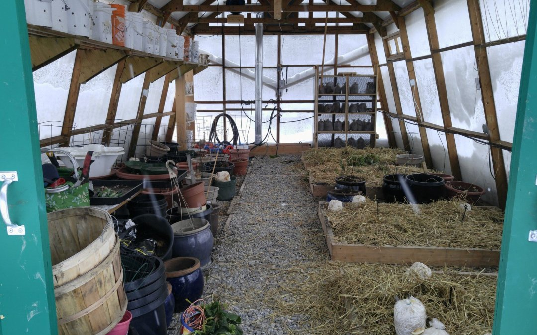 Greenhouse ready for winter