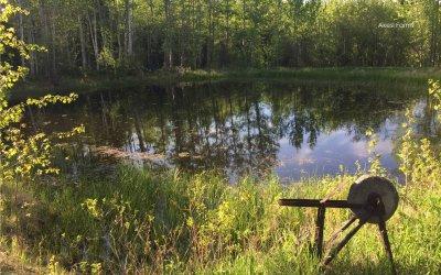 Big pond