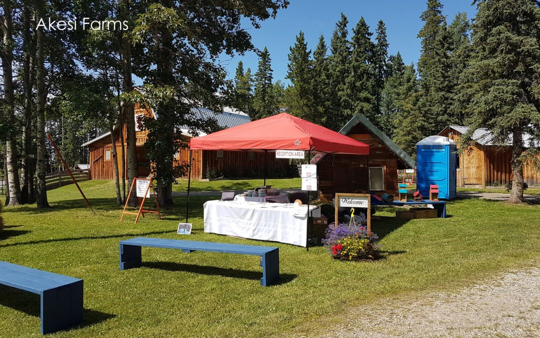 Open Farm Days 2019
