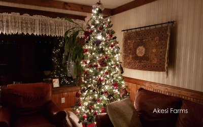 Christmas 2019 – almost the end of 2019
