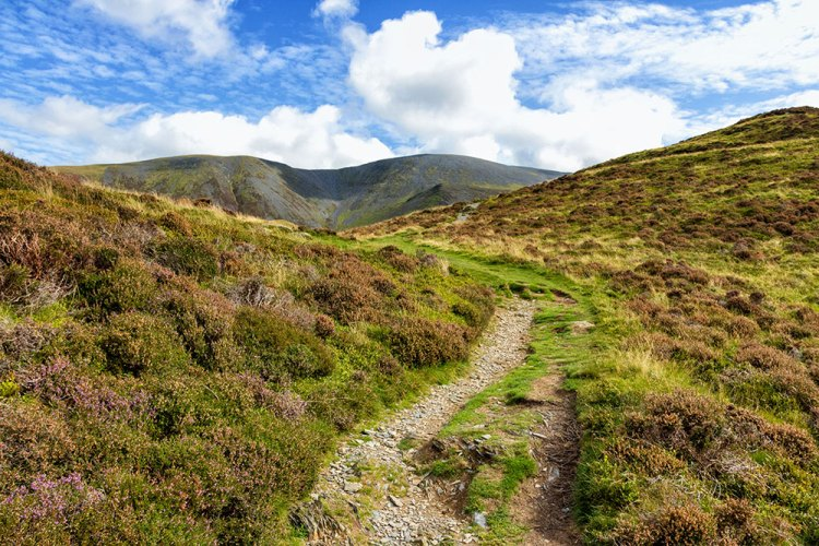 Path up to Ulla Pike with Skiddaw in the background
