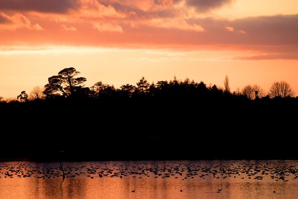 Sunset over Ibsley Water