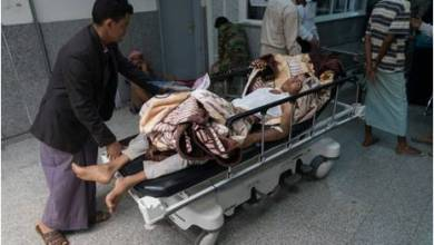 Photo of انفلونزا الطيور يقتل 30 مواطنا ويصيب 170 و المليشيا الحوثية تنهب ادويته المقدمة من المنظمات