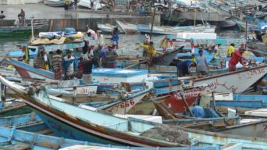 Photo of الساحل الغربي لليمن | الصيادون يعاودون استئناف اعمالهم في المناطق المحررة