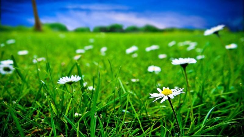 10 Hal yang Allah Perintahkan Kepada Kita Guna Dimudahkan Rezeki dan Diberkahi