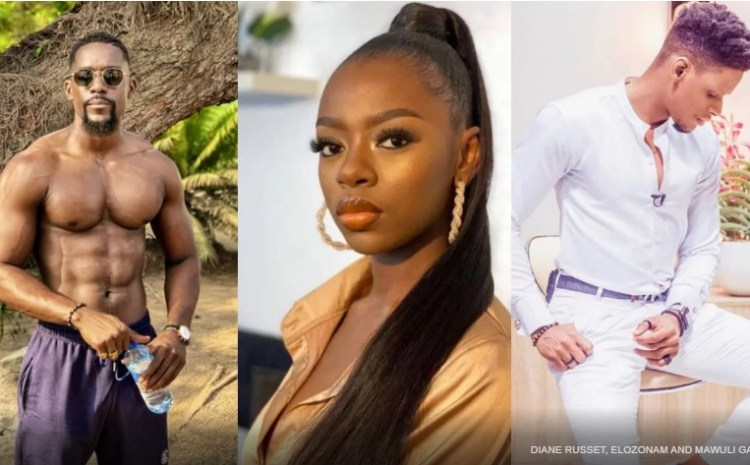 How BBNaija's Diane Betrayed Nigeria Just To Have a Taste of This Ghanaian Actor