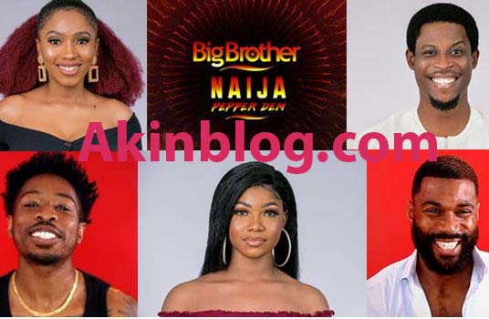bbnaija akinblog - Life After BBNaija: See What 2019 Housemates Are Doing After Leaving The Home