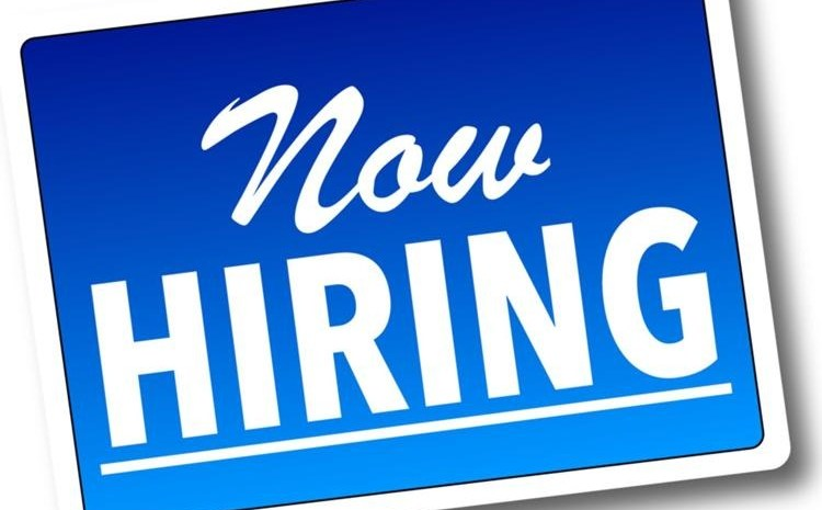 Now Hiring: Become Sales Rep or Online Support Staff (Apply Now)