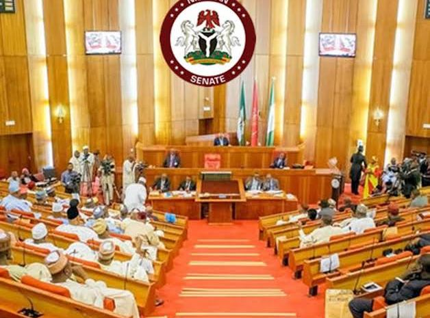 See The 3 Things Nigerian Senators Said About The Endsars Protests During Parliamentary Session