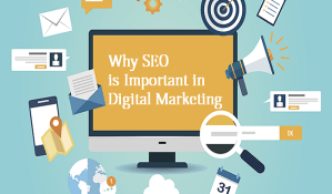 Importance of SEO in Digital Marketing and Why
