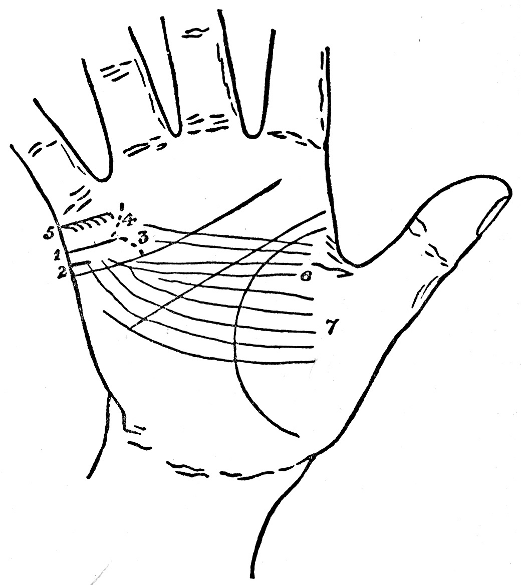 palmistry diagram marriage line double switch wiring light for all by cheiro lines the of