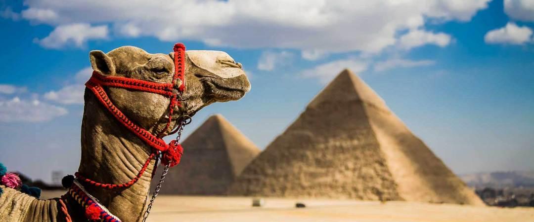 Viajes al Medio Oriente