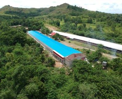 large-building-construction
