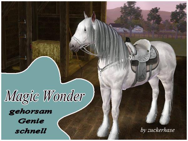 MagicWonder