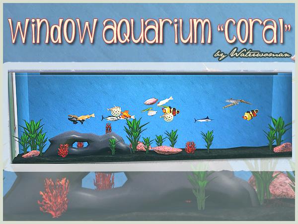 Window Aquarium Koralle
