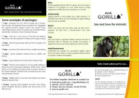 tri-fold_brochure