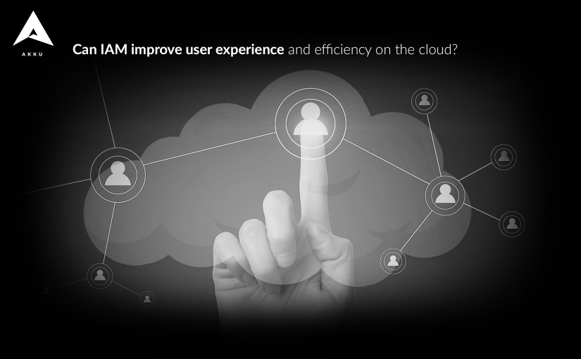 Can IAM Improve User Experience and Efficiency on the Cloud?