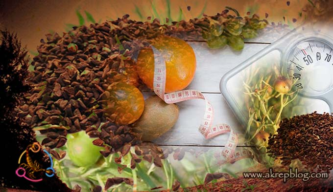 Üzerlik Tohumu Zayıflatır mı? Üzerlik Tohumu ile Kilo Verme ve Zayıflama