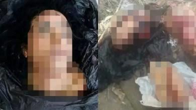 Photo of بعد العروس .. العثور على فتاة مصرية أخرى مذبوحة و مقطعة