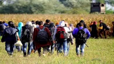 Photo of المستشار النمساوي ينتقد تصريحات وزير خارجيته بشأن أزمة الهجرة