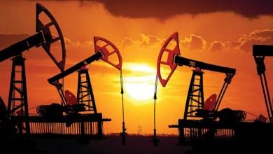 Photo of النفط يرتفع بفعل هبوط المخزونات الأمريكية لكن زيادة الإنتاج تكبحه