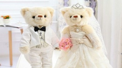 "Photo of ثرية بريطانية تقيم حفل زفاف لـ "" دميتين "" في مدينة الأقصر المصرية !"