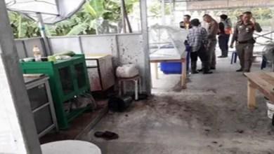 Photo of تايلاند : صاحب مطعم نباتي يقتل رجلاً و يقدمه للزبائن في الطعام !