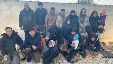 """Photo of """" الأسود """" .. وسائل إعلام تركية : إلقاء القبض على مهرب يمتلك سجلاً حافلاً و برفقته 19 لاجئاً سورياً مهرباً"""
