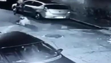 Photo of لص عاثر الحظ اعتدى على شرطية .. فلقي حتفه ( فيديو )