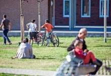 Photo of هولندا : سحب إقامة العشرات من اللاجئين السوريين .. صحيفة تكشف الأسباب