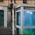 Telefon Kulübesinden Akvaryum