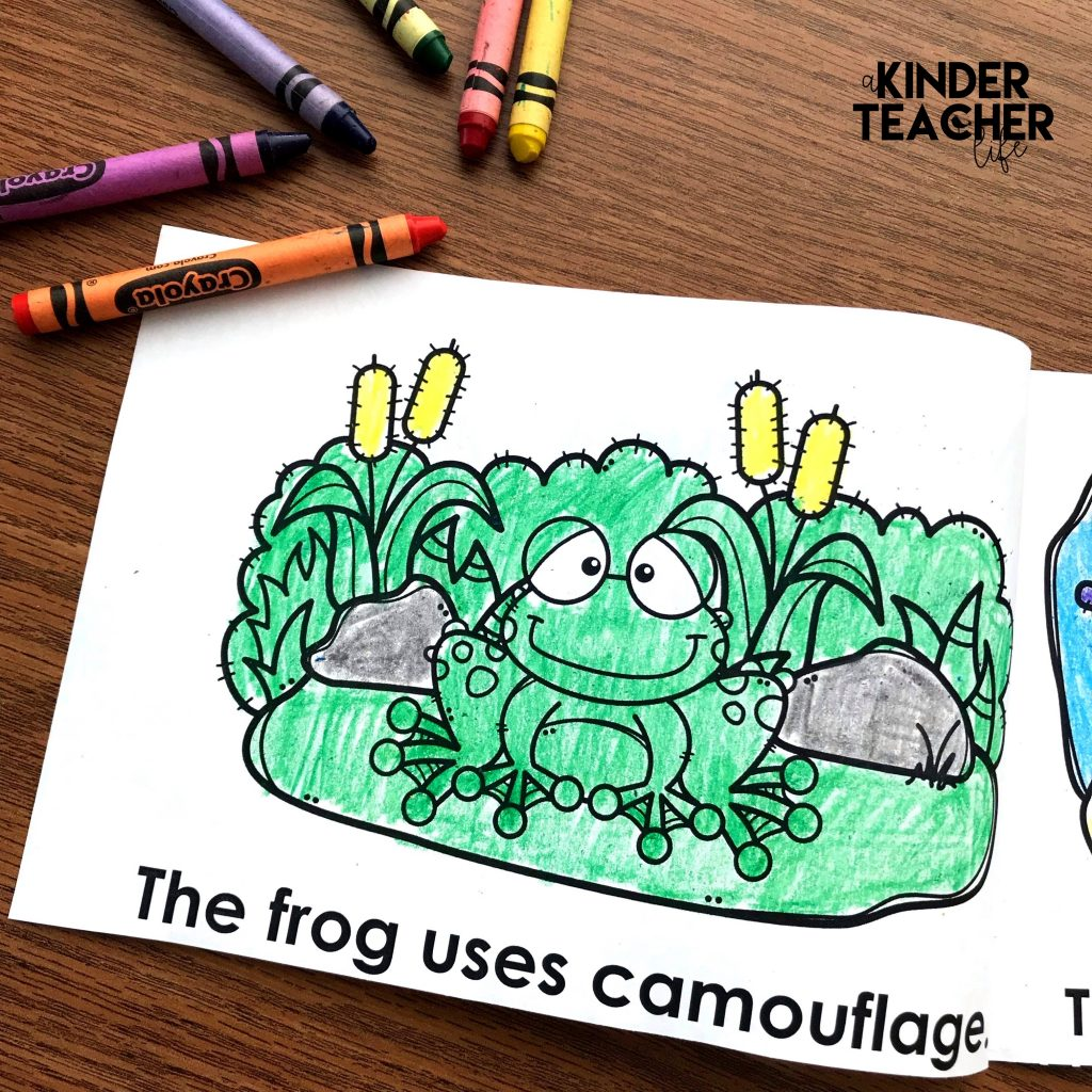 Animals In Camouflage Printable Booklet