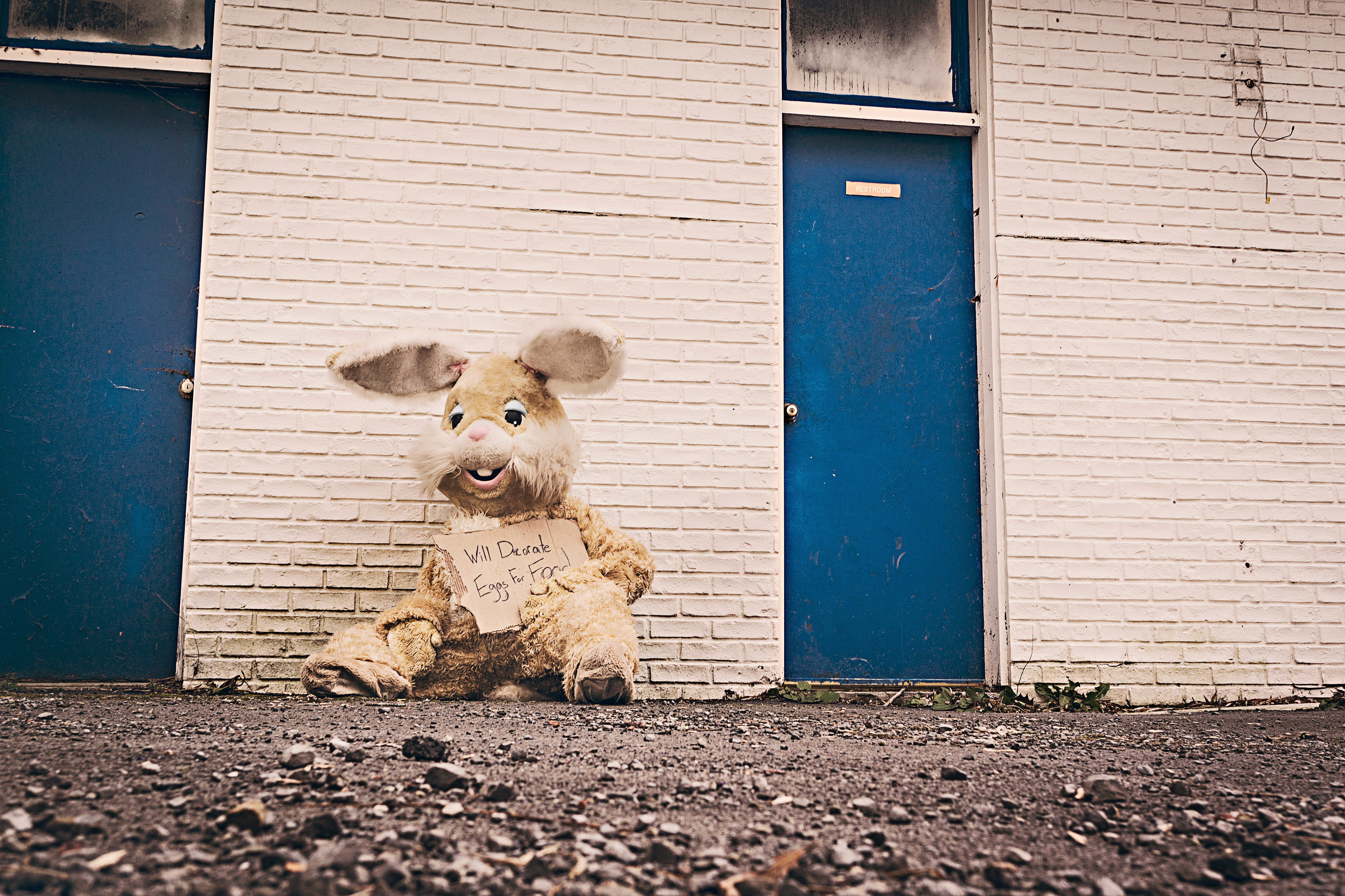 begging-costume-cuddly-toy-297