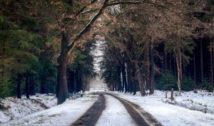 photography-of-road-during-winter-season-760971