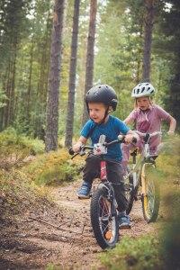 cykla i skogen