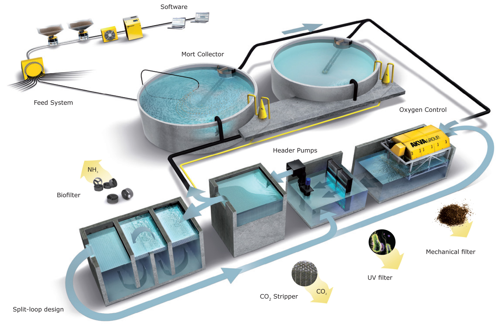 Image result for recirculating aquaculture systems