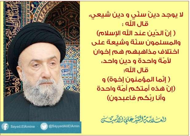 لا يوجد دين سني ودين شيعي