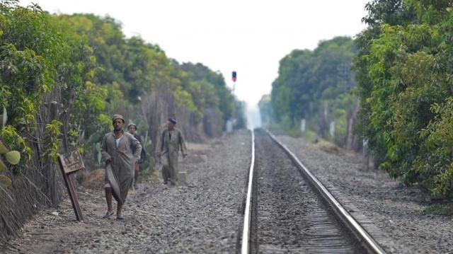 Mango farms workers walk on a railway after the end of their working day in the al-Qata village, Giza Governorate, on August 27, 2018. (Photo by Mohamed el-Shahed / AFP) (Photo credit should read MOHAMED EL-SHAHED/AFP via Getty Images)