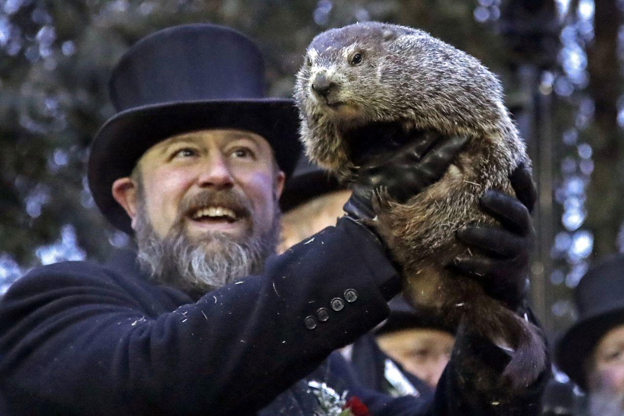 Groundhog Day Punxsutawney Phil S Prediction He