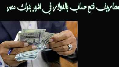 تكاليف فتح الحساب بالدولار والحد الأدنى في بنك مصر والإسكندرية و QNB وغيرها