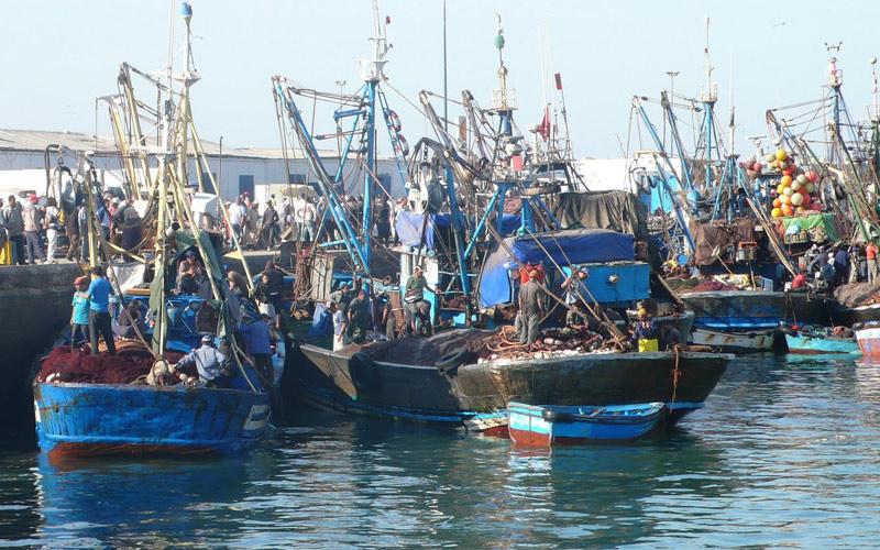 مهنيو الصيد التقليدي يوصون بتنمية القطاع