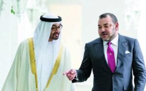 الإمارات العربية تستعد لمشاريع استثمارية ضخمة في الحسيمة