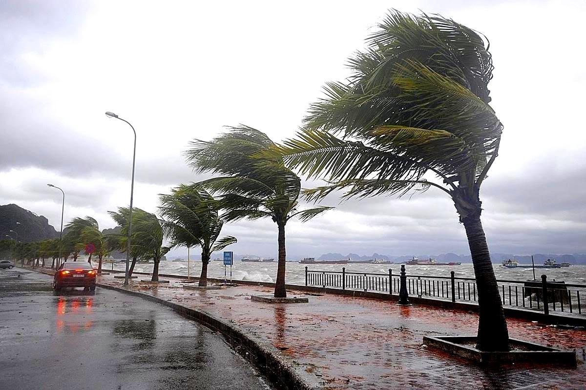 نشرة خاصة..أمطار رعدية تصل إلى 70 ملم بعدد من مناطق المملكة