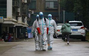 فيروس 'كورونا' يستنفر الصين وتضع  رقمين أخضرين رهن إشارة المغاربة