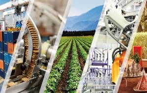 حصيلة 2020: المراكز الجهوية للاستثمار ساعدت على إحداث 20 ألفا و466 مقاولة